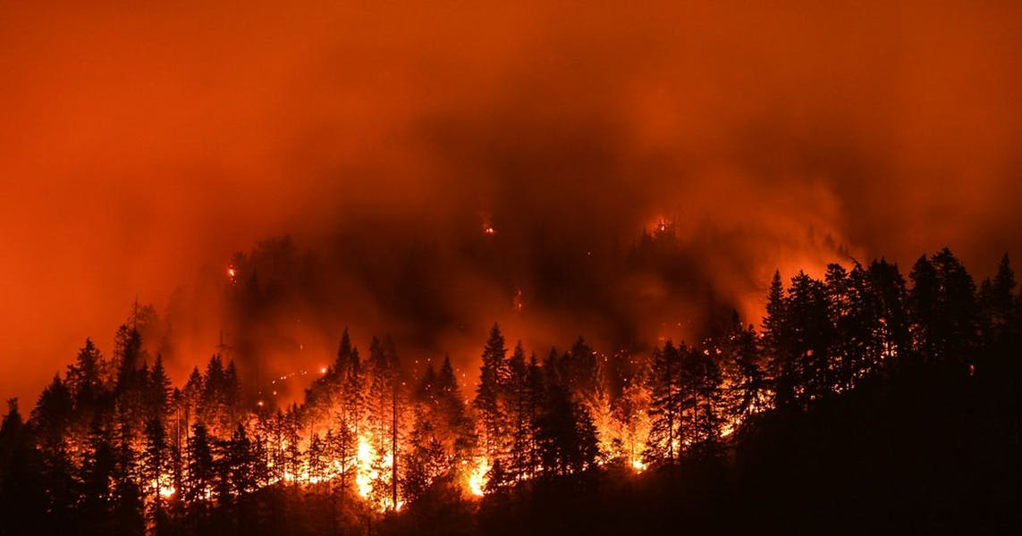 Is climate change the primary reason for the West coast fires?