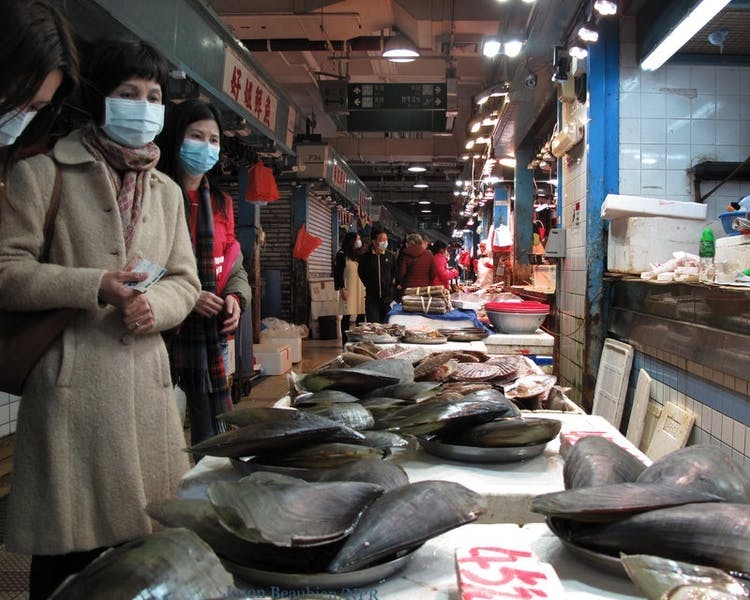 Should wet markets in China and around the world be banned?