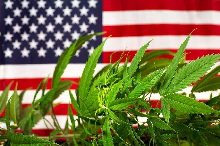 Should marijuana be legalized nationwide?