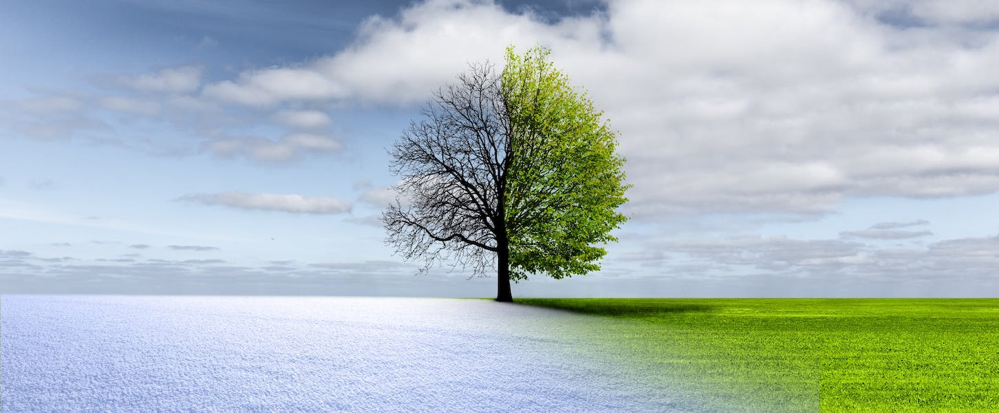 Which season is better: winter or summer?