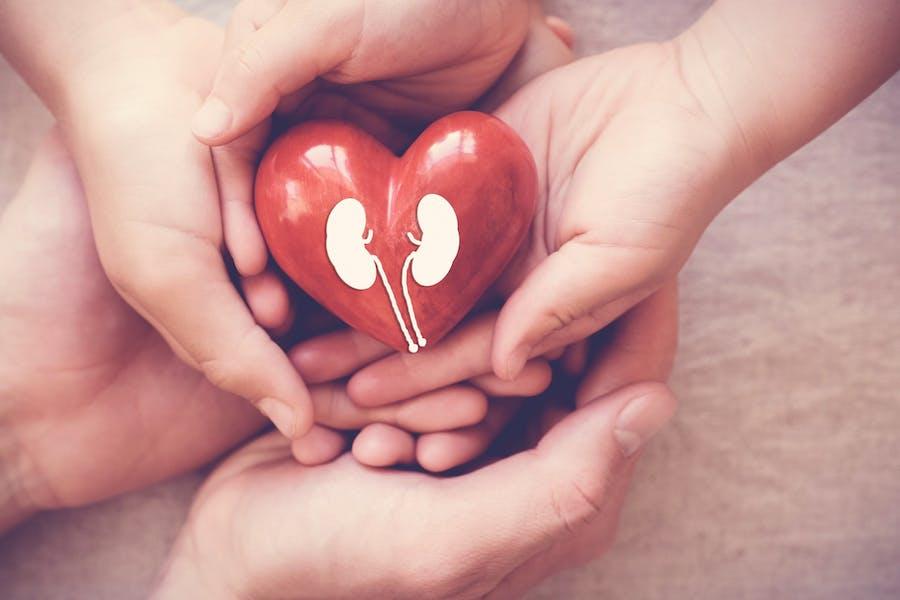 Should becoming an organ donor be mandatory?